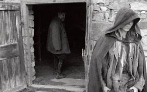 DVD Review: 'The Turin Horse'