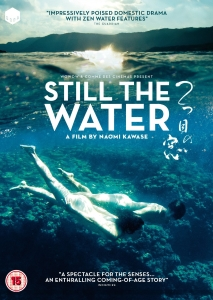 DVD Review: 'Still the Water'