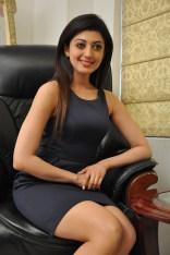 Pranitha suhash photoshoot 8