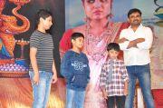 Bhale Bhale Manchi Roju Audio Launch 22