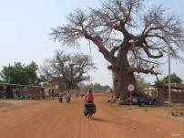 cinecicleta-Burkina-Fasso (47)