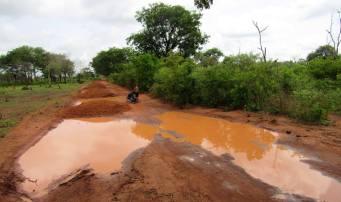 Guinea-Bissau (11)