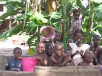 Guinea-Bissau (30)