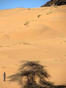mauritania (58)