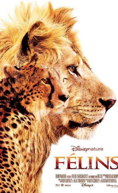 Félins, affiche du film Disney Nature