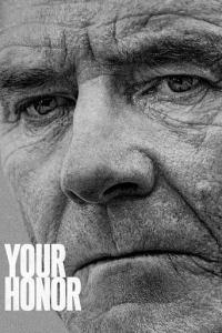 Your Honor: Temporada 1