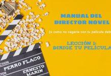director novel