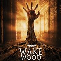 Crítica cine: Wake Wood (2011)