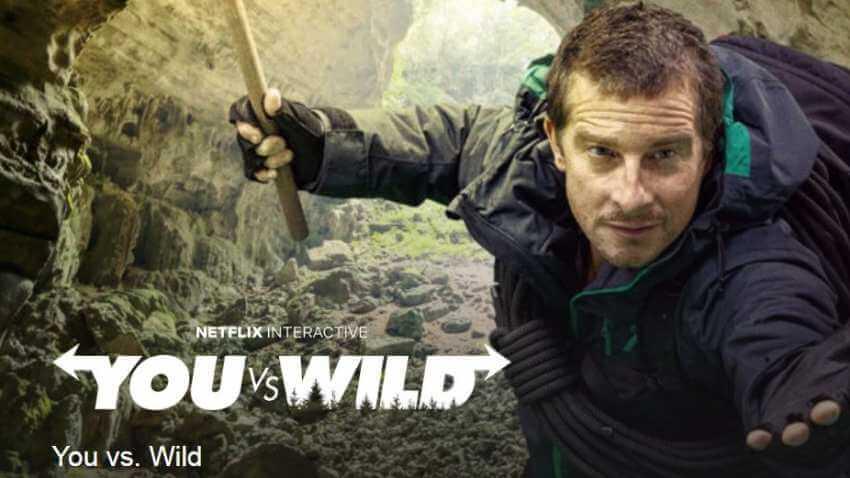 you-vc-wild