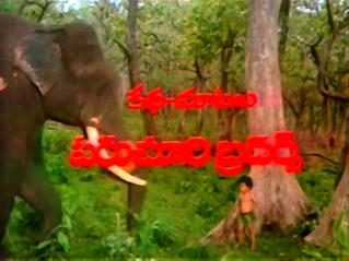 CinemaChaat_Adavi-Donga_adopted