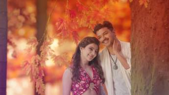 Vijay and Samantha 3