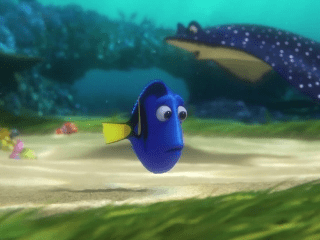 finding dory feat