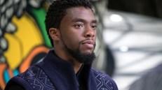 Black Panther 2 - Chadwick Boseman