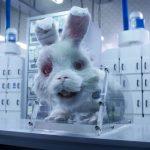 El cotrometraje Save Ralph hace un llamado a detener el testeo en animales.