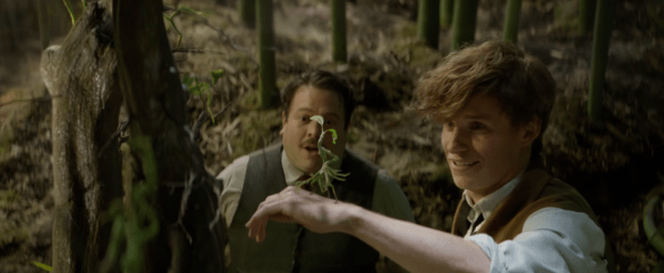 Image result for fantastic beasts and where to find them movie stills