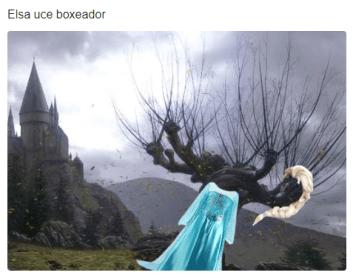 elsa frozen meme 22