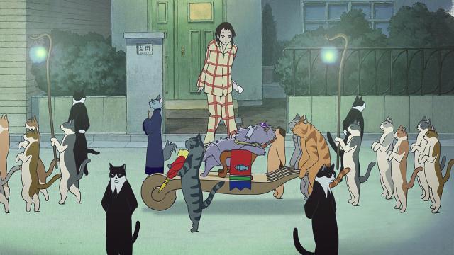 El regreso del gato.jpg