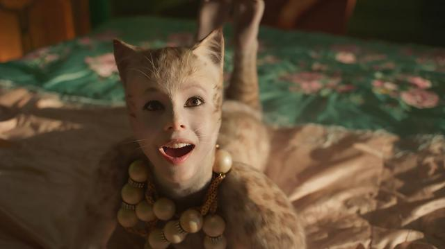 cats-feature-1