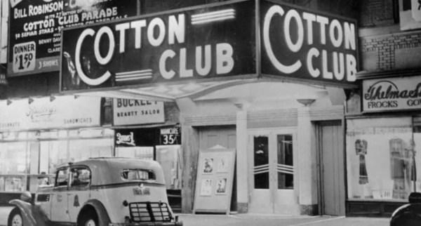 cotton-club-fox