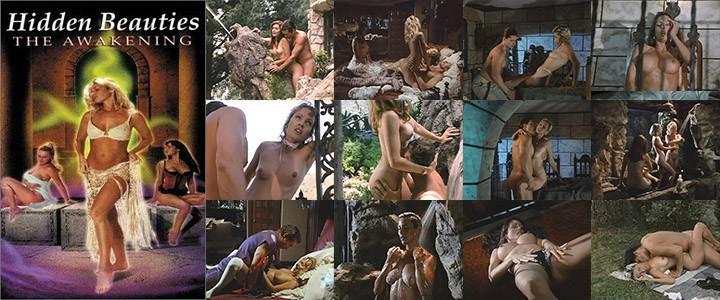 Hidden Beauties (1999) Poster - Free Download & Watch Full Movie @ cinerotic.net