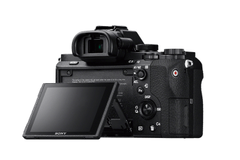 Sony A7II Back