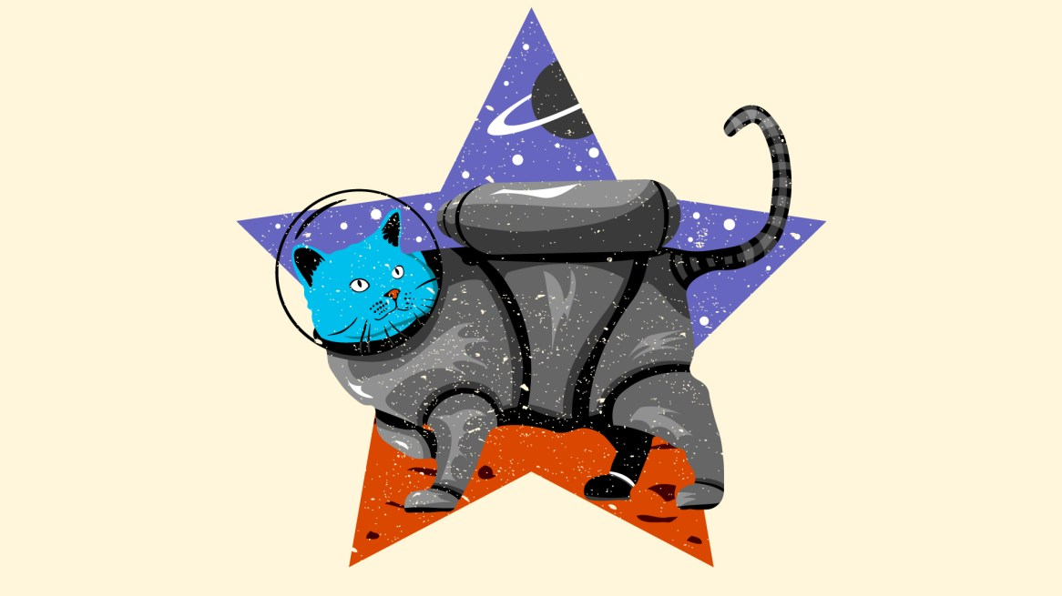 Space-Cat_WP_V1