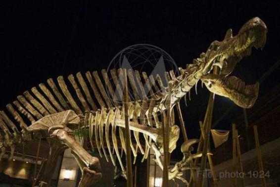 JurassicWorld-photos-003