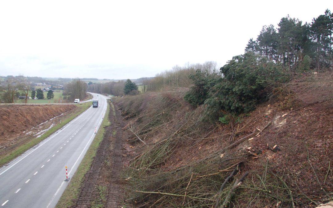 Abattage des arbres – route Charlemagne