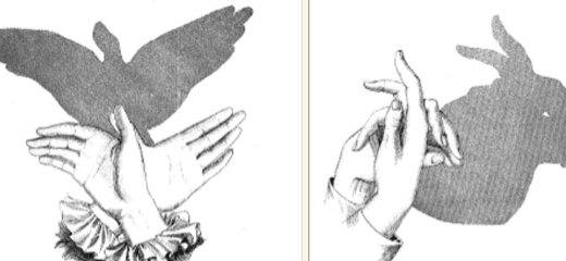 Sombras de animales con las manos