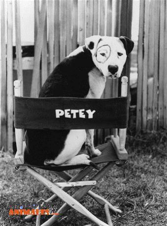 Petey el perro de Los pequeños traviesos