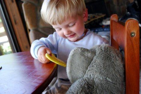 Feeding the elephant.