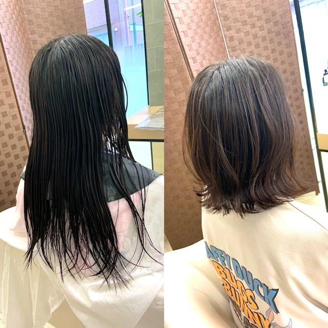 左側がカット前で右側が切り終えたスタイル写真