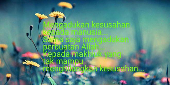 cinta sunnah mengadukan kesusahan