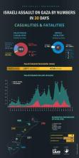 Euro-Mid infographic casualties and fatalities