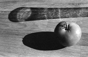 """Tomato Study"""