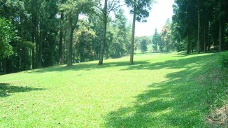 green-scenery Selabintana