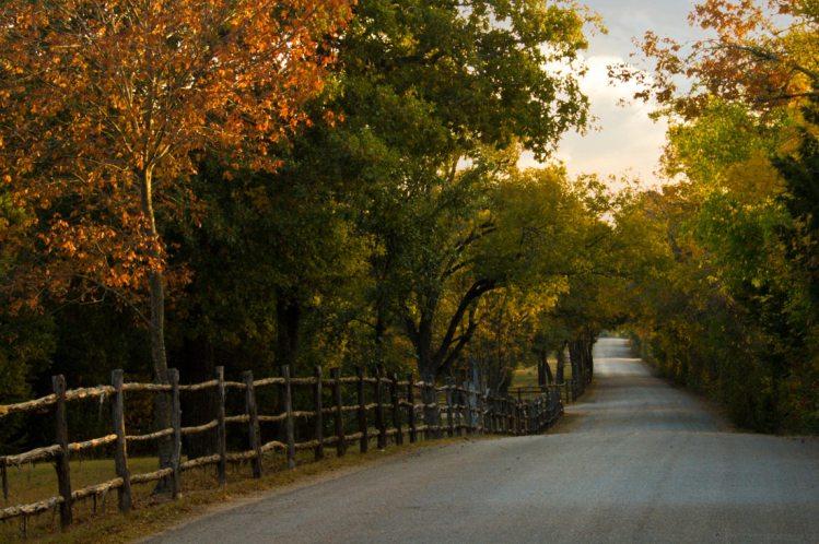 Autumn Drive