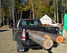 Logs to take to mill on break day