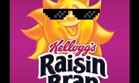 Raisin-bran-sunglasses