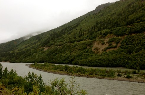 Low Clouds in Denali