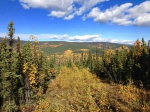 Autumn in AK