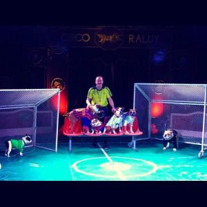 Artistas Circo Raluy. Otras temporadas