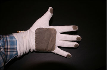 Palm of glove