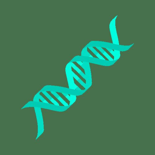 C1H Testing DNA
