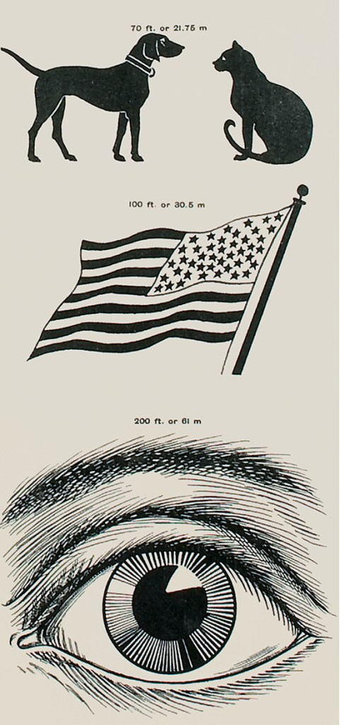 Detail of an eye chart showing images of a dog, cat, flag and an eye.