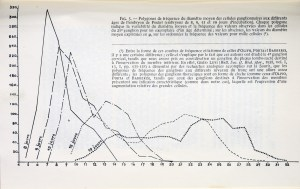 Graph, in French, showing an early peaks and gradual decrease for various instances.