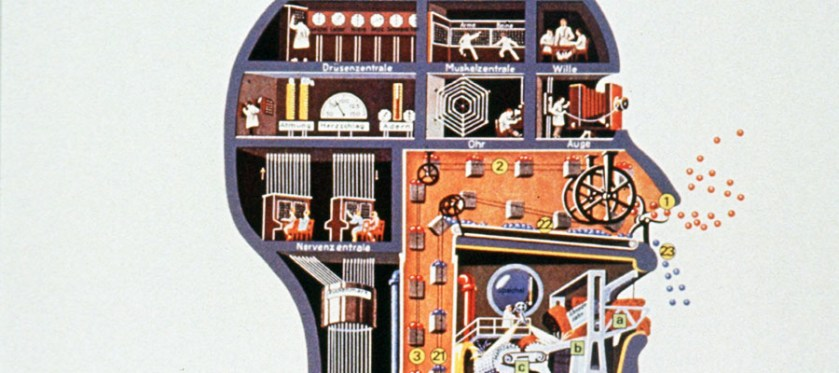 A crossection of a head illustrated with industrial scenes labeled in German.