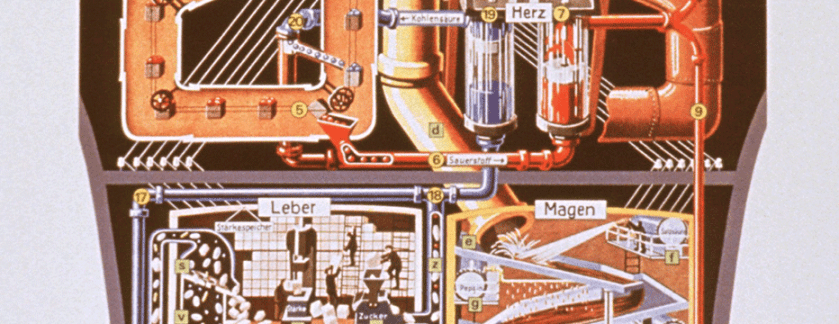 A crossection of a torso illustrated with industrial scenes labeled in German.