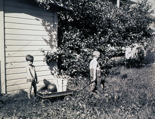 Two children transporting apples and a pumpkin in a wagon