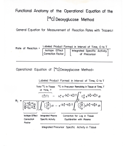 A page explaining the complex equation describing the reaction rates for chemicals needed to interpret measured levels of chemicals.